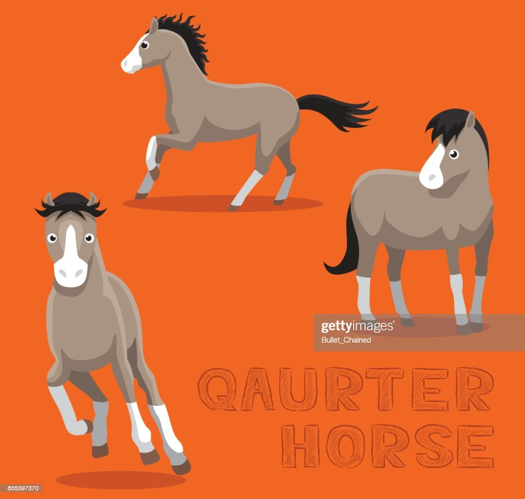 Horse Quarter Cartoon Vector Illustration