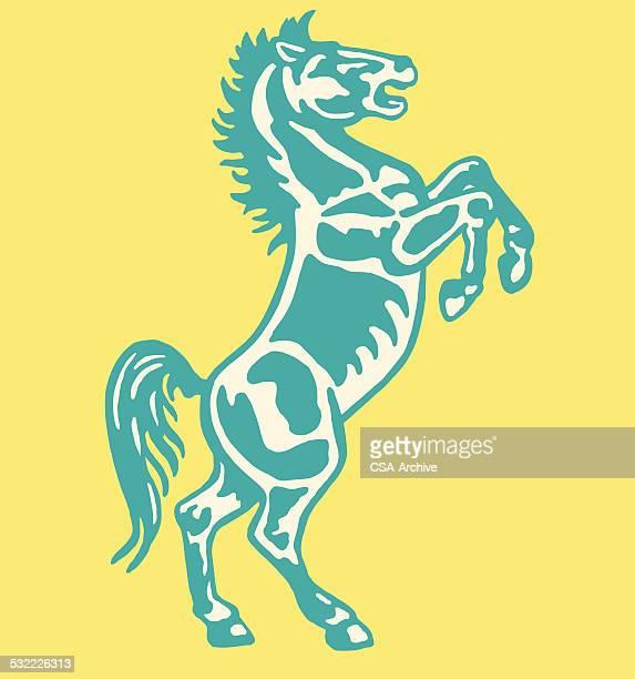 ilustrações de stock, clip art, desenhos animados e ícones de cavalo empinar-se - rodeio