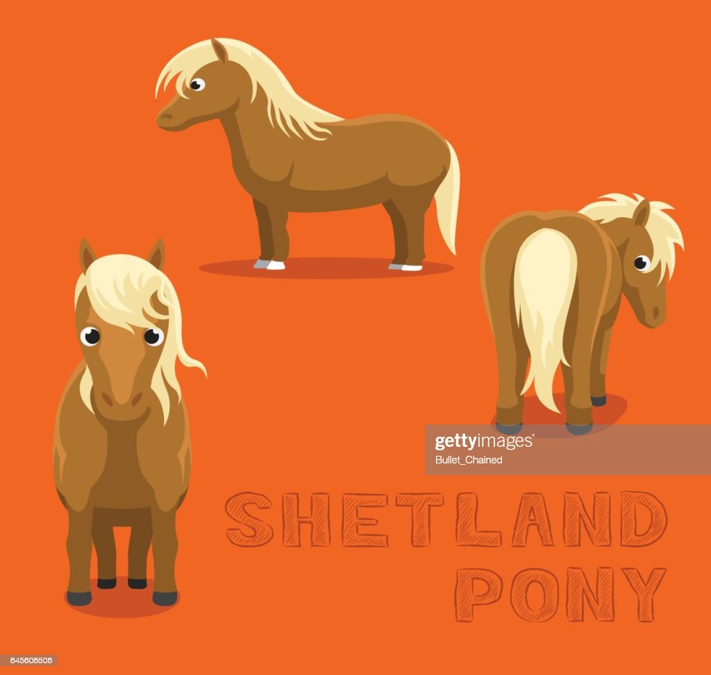 Horse Shetland Pony Cartoon Vector Illustration