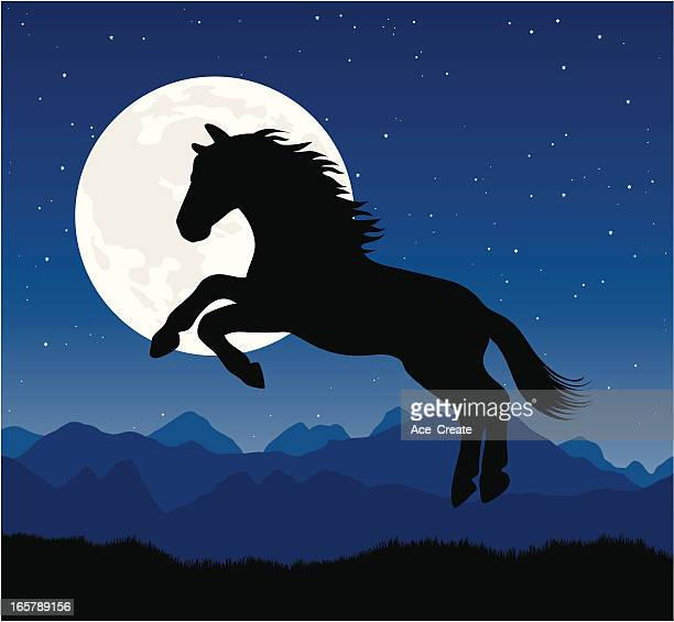 horse silhouette jumping with a full moon - stallion stock illustrations, clip art, cartoons, & icons