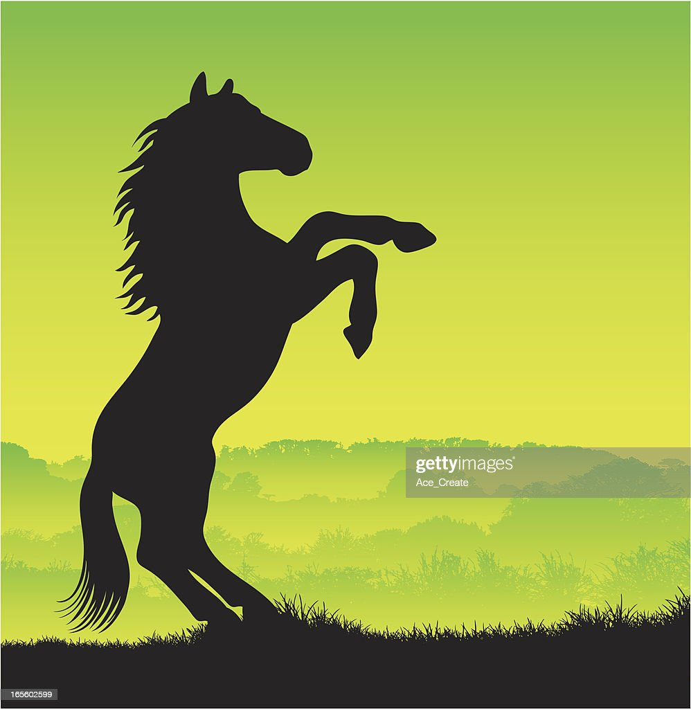 horse silhouette rearing up vector art getty images