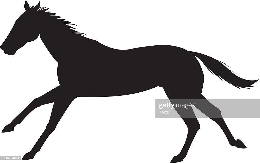 horse silhouette vektör
