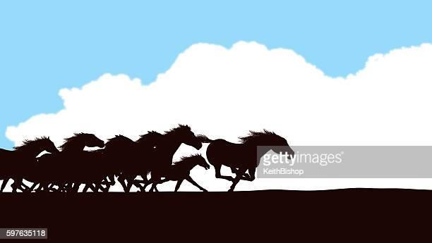 Horse Stampede Background