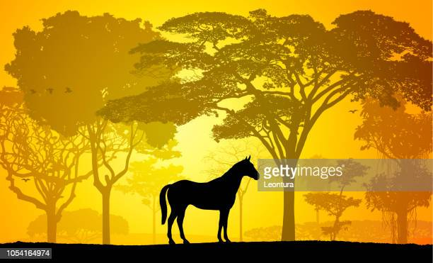 Horse (Trees Are Complete- a Clipping Path Hides the Edges)