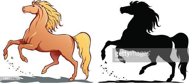 horse - animal mane stock illustrations