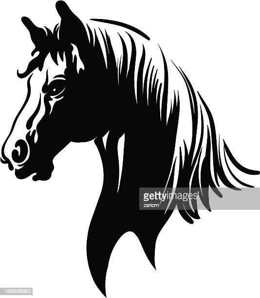 60 Top Horse Head Stock Illustrations Clip Art Cartoons Icons