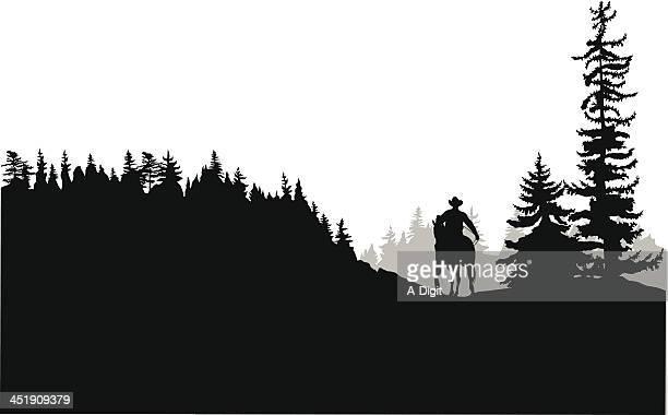 horseback - horseback riding stock illustrations, clip art, cartoons, & icons