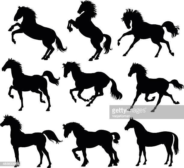 horses silhouettes - horse stock illustrations