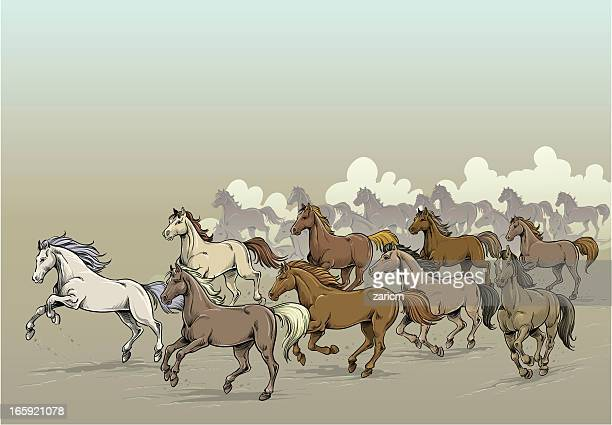 horses - group of animals stock illustrations, clip art, cartoons, & icons