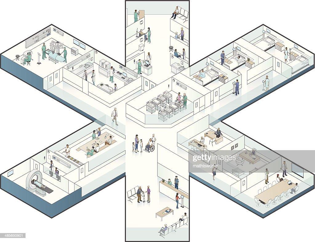 Hospital Cutaway Illustration, Star-Shaped : Vector Art