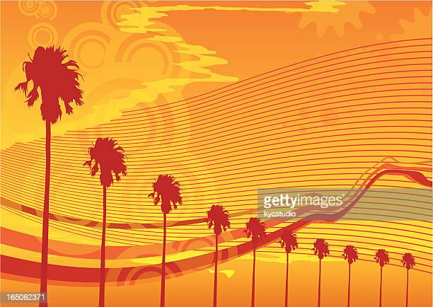 Hot summer waves and palms