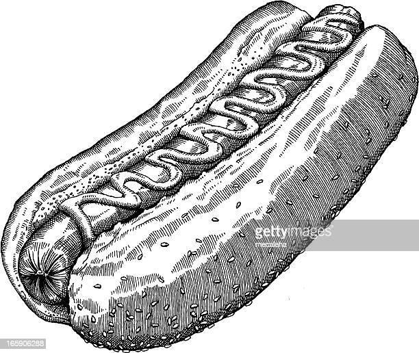 hotdog zeichnung - hot dog stock-grafiken, -clipart, -cartoons und -symbole