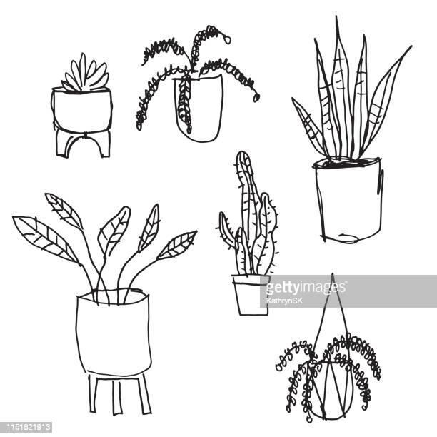 illustrations, cliparts, dessins animés et icônes de plantes de maison noir et blanc - plante verte