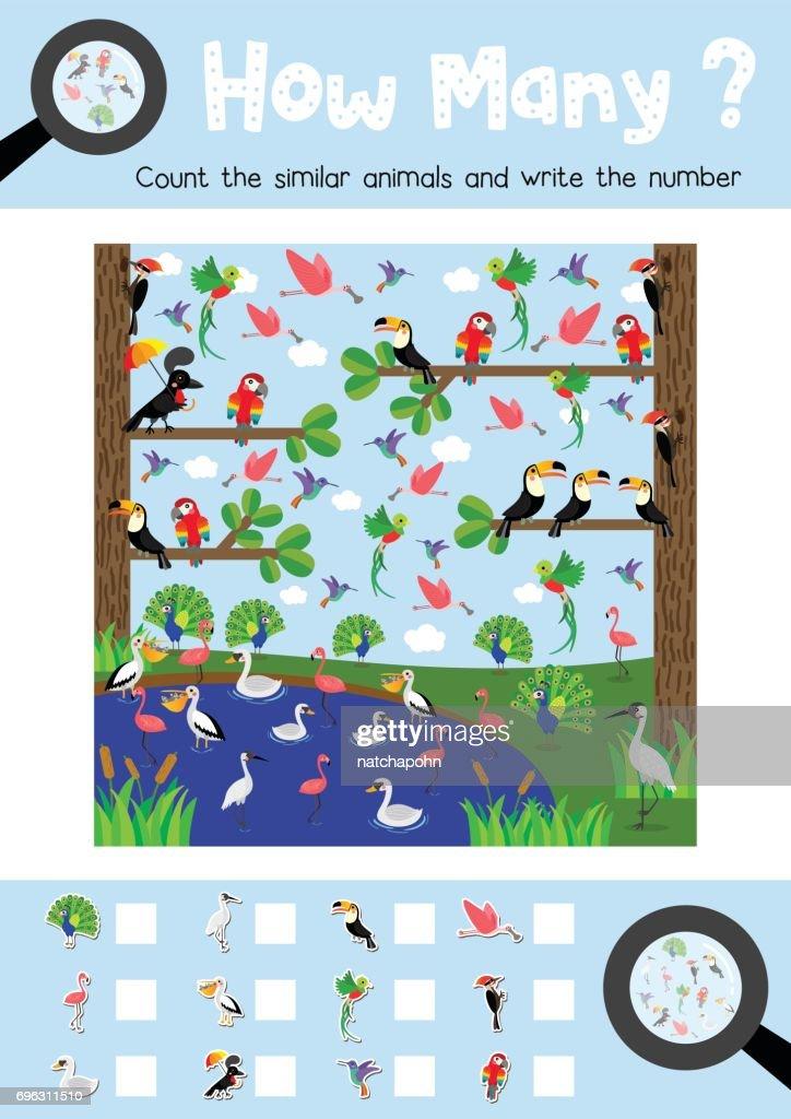 How many bird animal