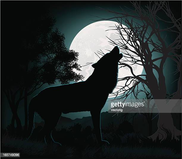 howling at the moon - howling stock illustrations, clip art, cartoons, & icons