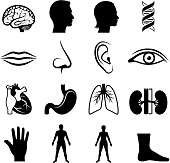 human anatomy and senses black & white vector icon set