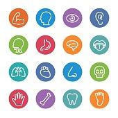 Human Anatomy Icons - Circle Line Series