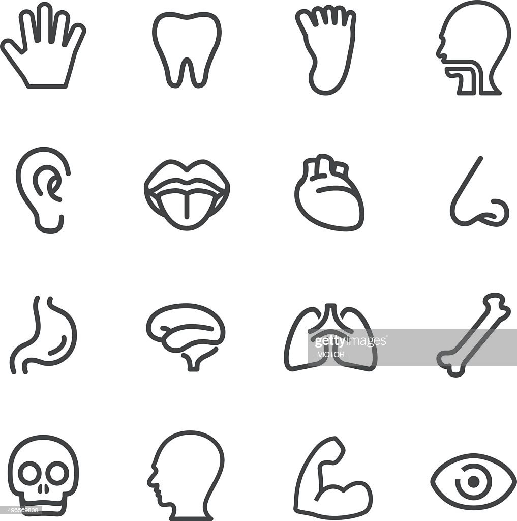 Human Anatomy Icons - Line Series