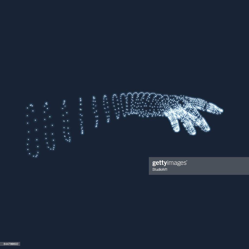 Human Arm, Hand Model. Vector Illustration.