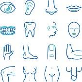 Human body icons