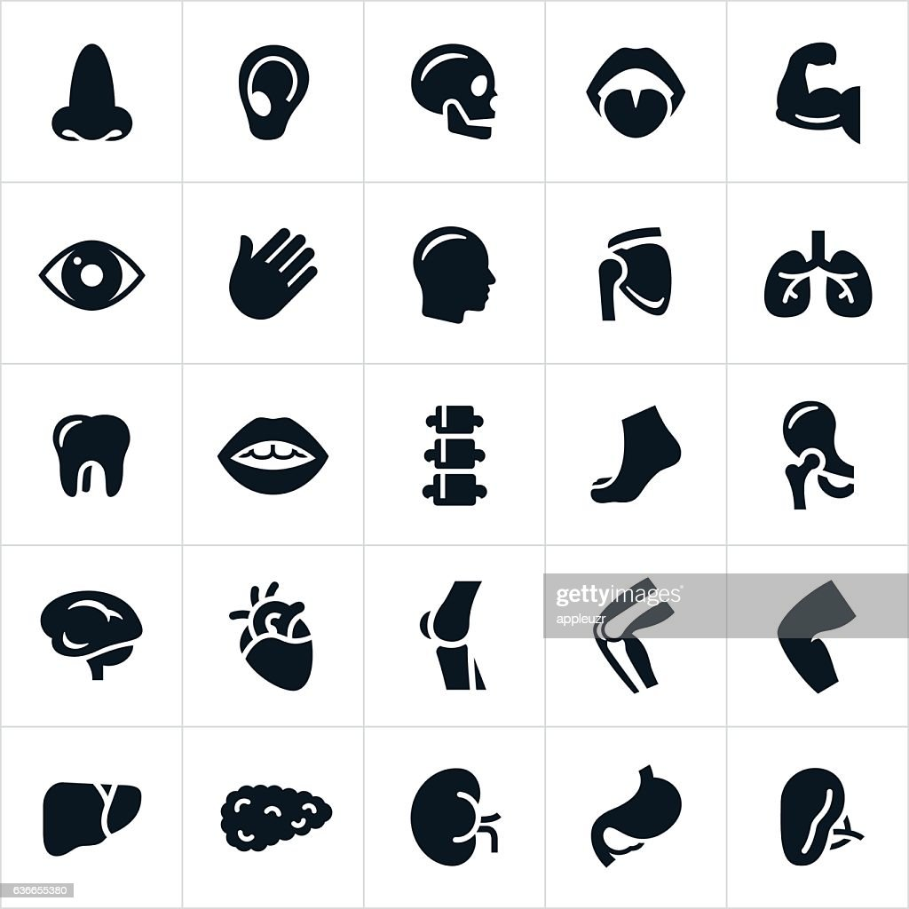 Human Body Parts Icons : stock illustration