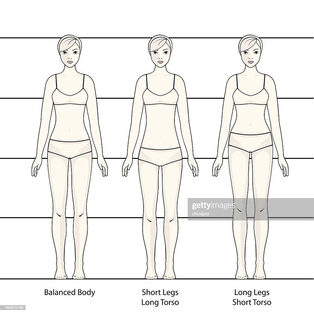 Menschlicher Körper Vektorgrafik | Getty Images