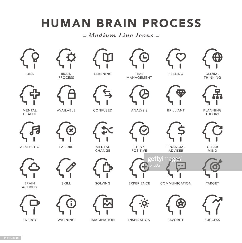 Human Brain Process - Medium Line Icons : Stock Illustration