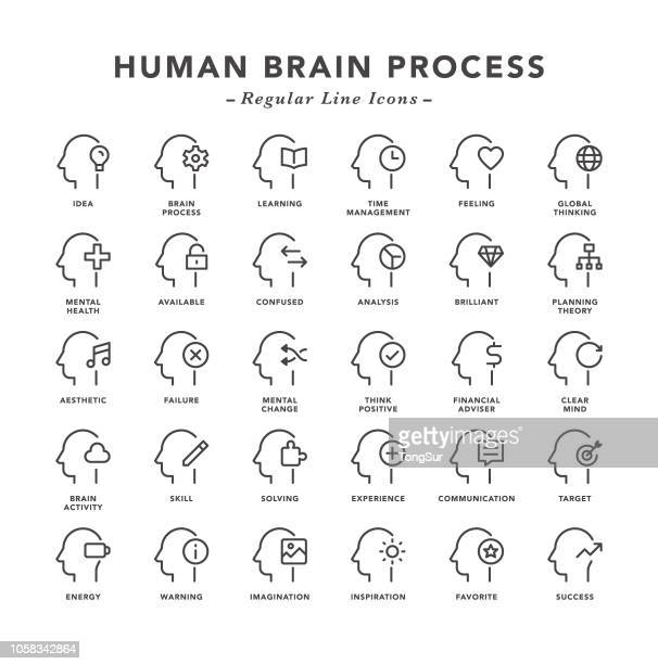 human brain process - regular line icons - contemplation stock illustrations, clip art, cartoons, & icons