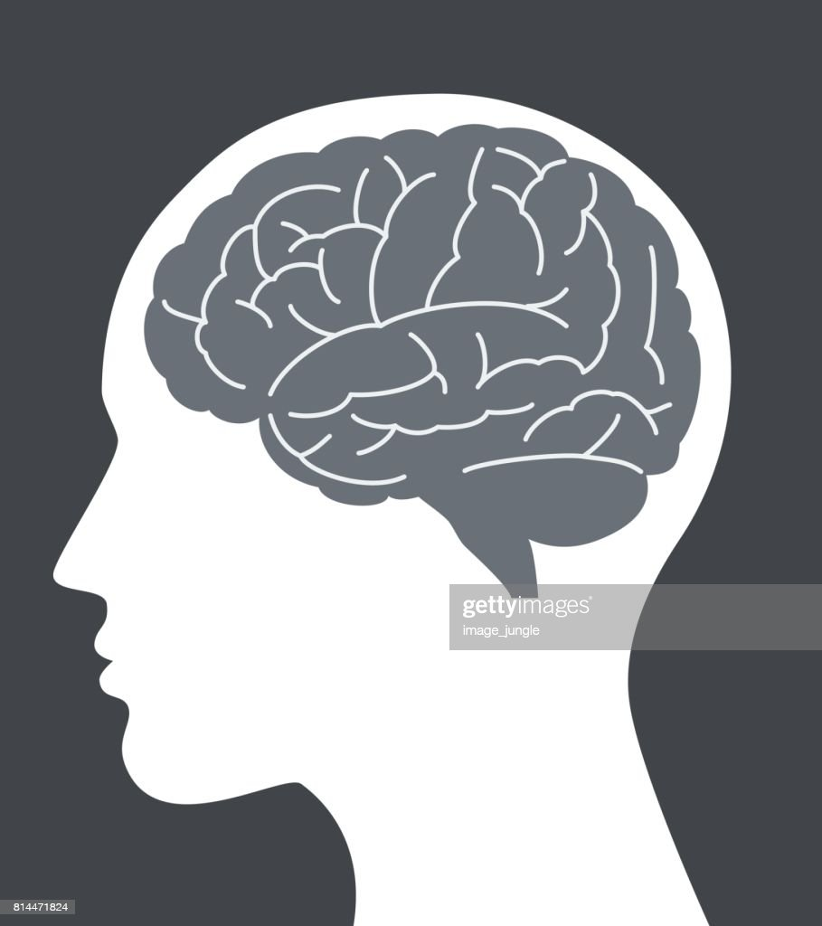 Human brain vector illustration with face profile