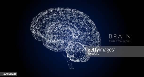 human brain, wire-frame brain - hologram stock illustrations
