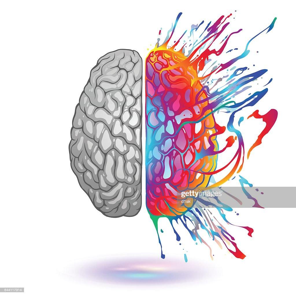 Human brain with creative splash