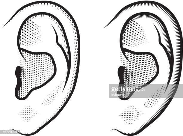 illustrations, cliparts, dessins animés et icônes de les oreilles noir & blanc ensemble d'icônes vectorielles libres de droits - oreille humaine