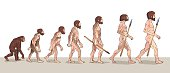 Human Evolution. Man Evolution. Historical Illustrations.