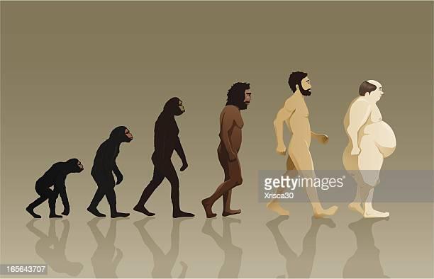 ilustraciones, imágenes clip art, dibujos animados e iconos de stock de evolución humana - evolución