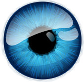 Human eye iris isolated on white background.