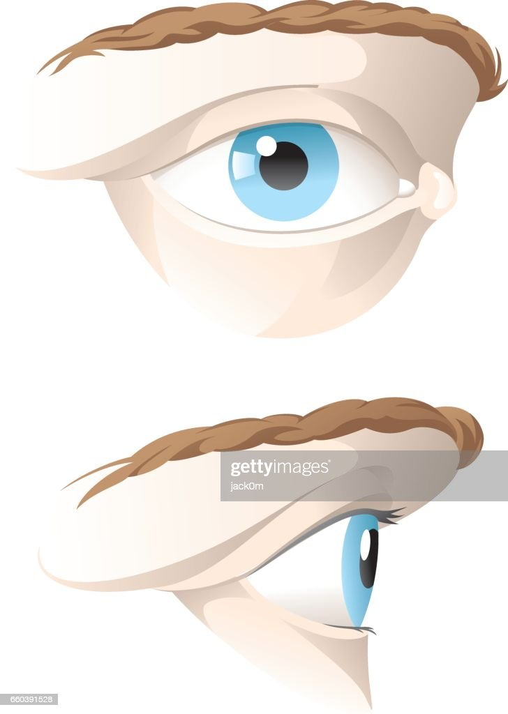 Human Eye Vector Art | Getty Images