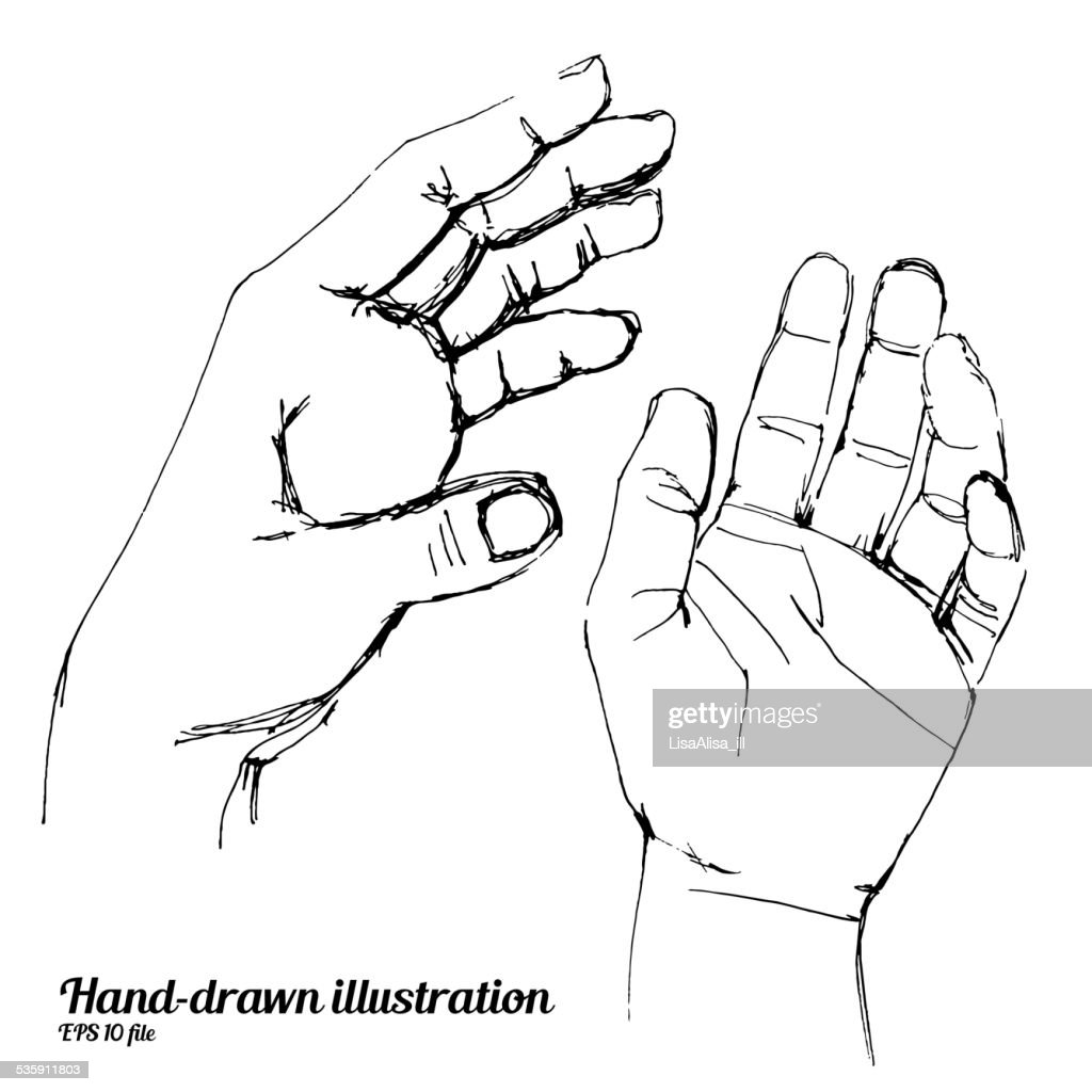 Human hands sketch illustration : Vector Art