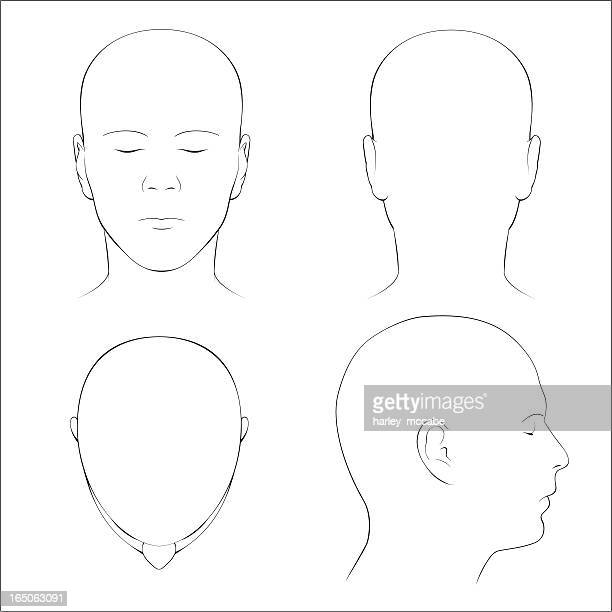 stockillustraties, clipart, cartoons en iconen met human head surface anatomy - outline - hoofd