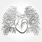 Human heart and lungs like a tree branch