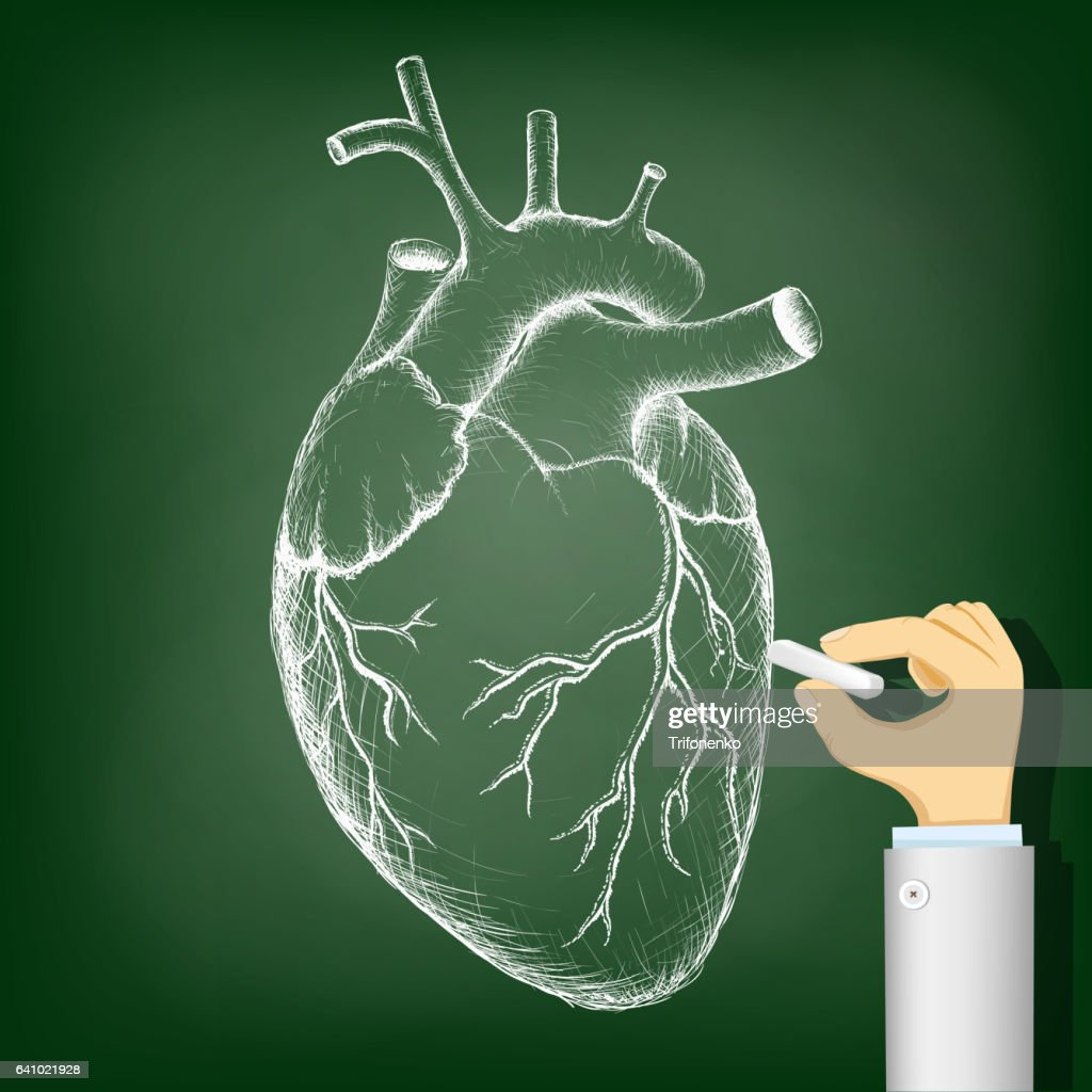 Human heart drawing on a blackboard. Health and Medicine.
