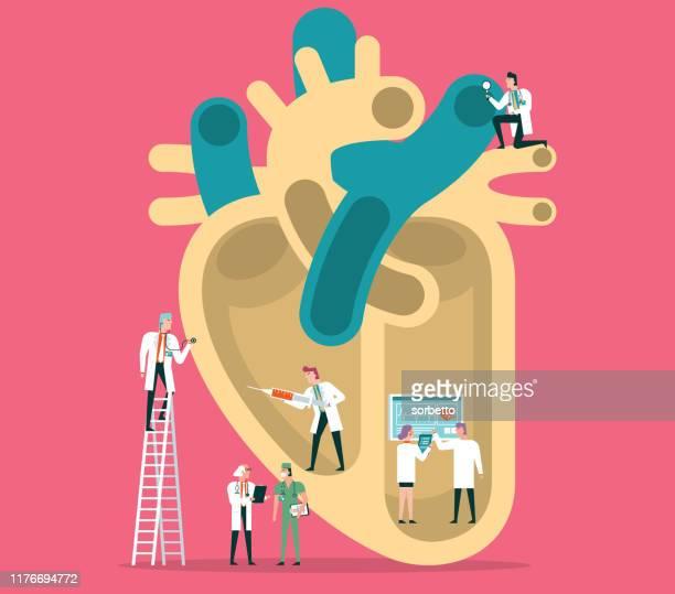 illustrazioni stock, clip art, cartoni animati e icone di tendenza di cuore umano - cardiologo
