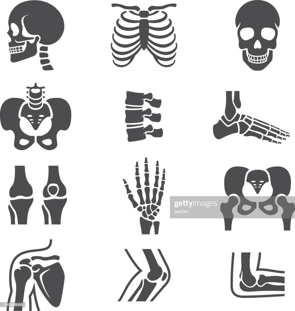 Conjunto de ícones de articulações humanas : Ilustração