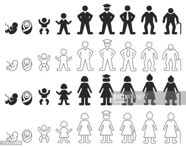 menschlicher lebenszyklus von mann und frau - erwachsene person stock-grafiken, -clipart, -cartoons und -symbole