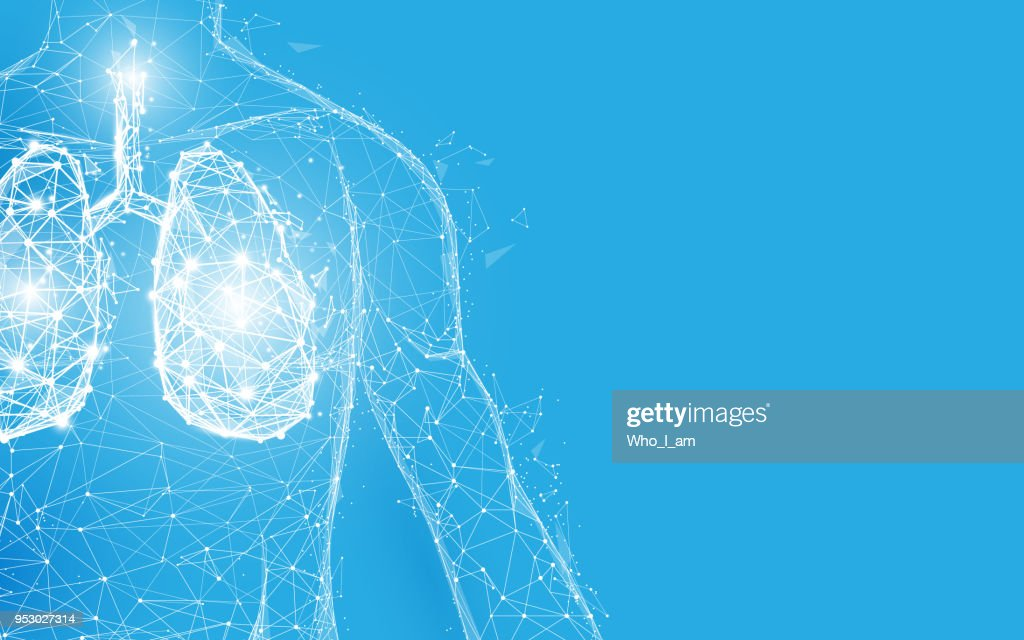 Human lungs anatomy form lines and triangles, point connecting network on blue background. Illustration vector