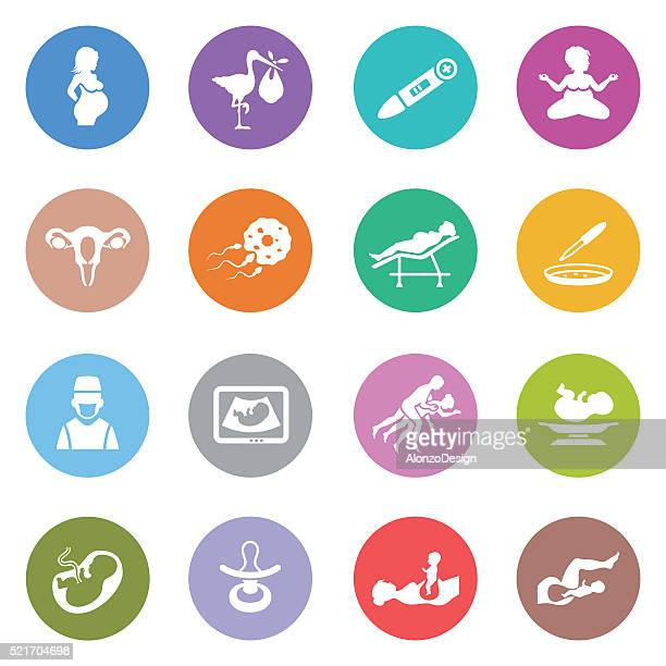 human pregnancy icons - animal fetus stock illustrations, clip art, cartoons, & icons