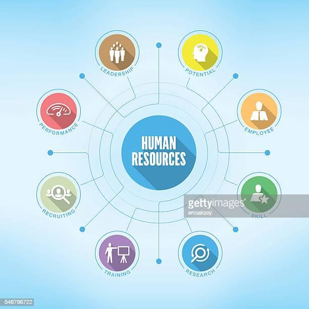 ilustraciones, imágenes clip art, dibujos animados e iconos de stock de human resources chart with keywords and icons - recursos humanos