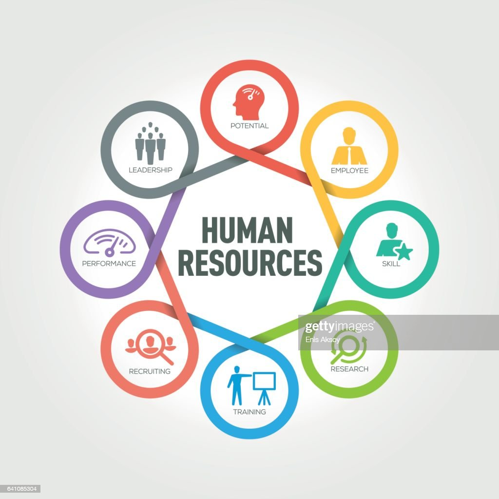 Human Resources: Human Resources Infographic With 8 Steps Parts Options