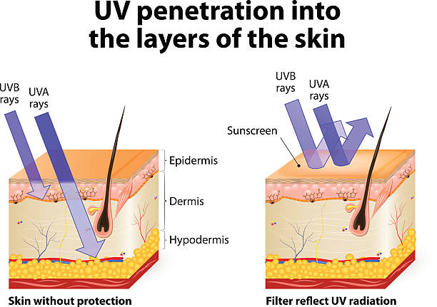 understanding uv radiation