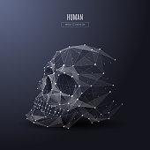 human skull low poly white