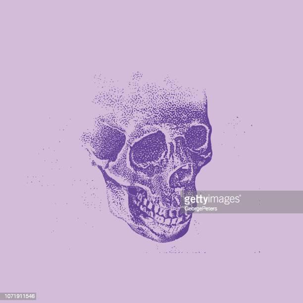 human skull - stipple effect stock illustrations